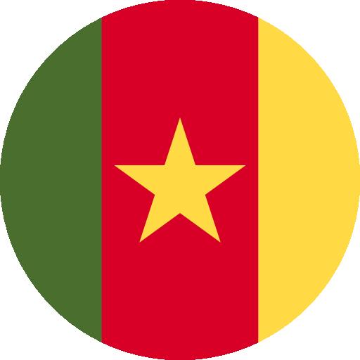 Q2 Cameroun