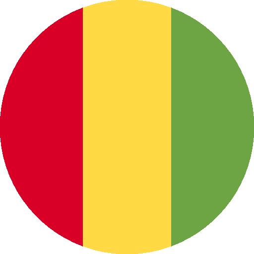 Q2 Guinée