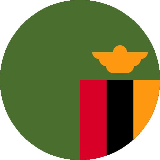 Q2 Zambie